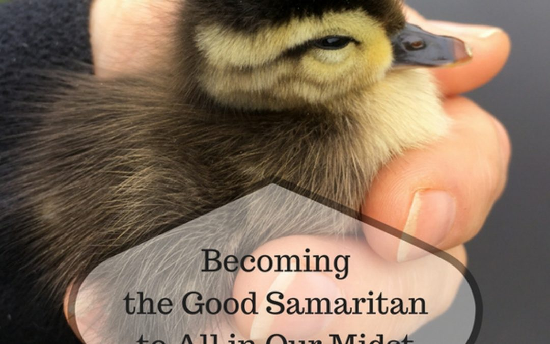 Becoming the Good Samaritan to Those in Need